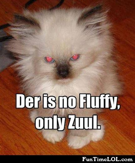 der is no fluffy, only zuul