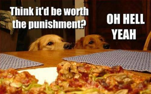 Think it'd be worth the punishment?