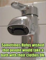 Sometimes Rufus wished that people would take a bath with their clothes on