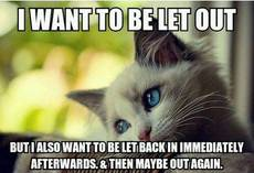 I want to be let out