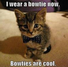 I wear a bowtie now