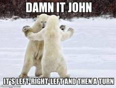 dancing polar bears