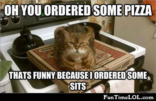 Oh you ordered some pizza, that's funny because I ordered some sits