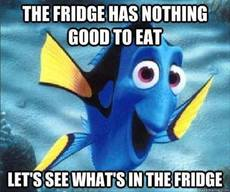 The fridge has nothing good to eat