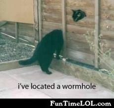 I've located a wormhole