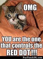 OMG you are the one that controls the red dot!!!