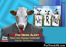 Mad Cow Disease Outbreak!