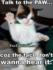 Talk to the paw... coz the face don't wanna hear it