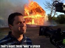 that's right, there was a spider
